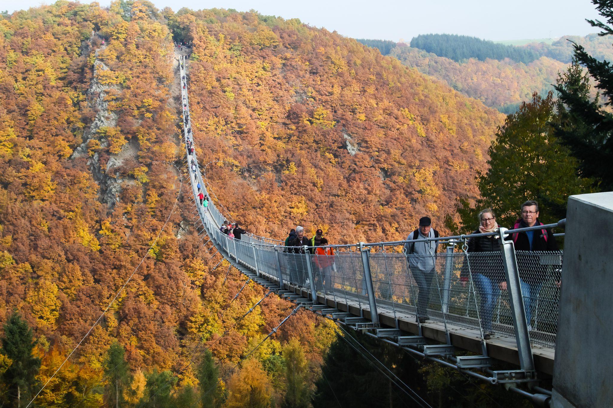 Hängeseilbrücke im Hunsrück